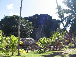 paysage du parc