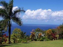 Garden of Eden Arboretum & Botanical Garden