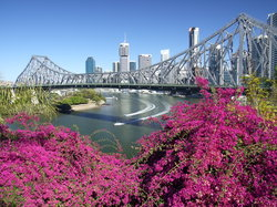 Brisbane and Story Bridge (17568011)
