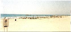 La Vila Joyosa - Spacious beach