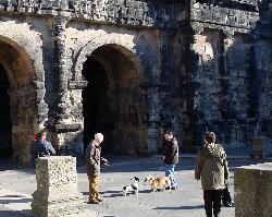 Otis the Bassett and friend at Porta Nigra