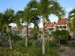 Garden and hotel buildings