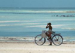 Bike and boy (17613640)
