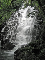 Vunivasa waterfall from tour (17639196)