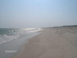 Fire Island National Seashore
