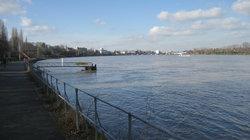 A view along the Rhine River in Bonn.