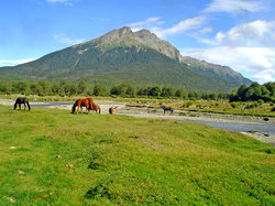 Parque Nacional Tierra del Fuego: vistas desde el tren del fin del mundo (17692117)