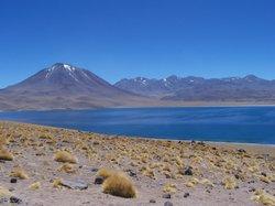 Lake Miscanti (17729162)