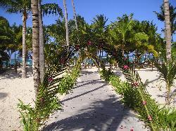 walkway to wedding gazebo