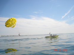 Hang Loose Parasail