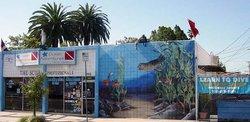 Ocean Adventures Dive Company