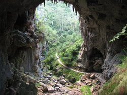 ジェノラン洞窟