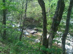 Raven Run Nature Sanctuary