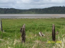 Grays Harbor National Wildlife Refuge