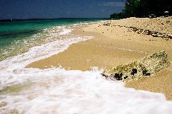 reagge beach