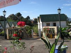 Bungalow Motel Violette