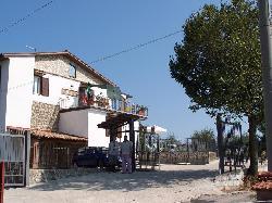 Villanella - Anastasios