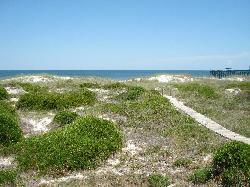 Path thru the dunes
