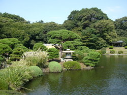‪Shinjuku Gyoen National Garden‬