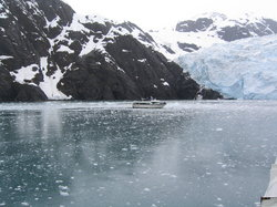 Renown Glacier Cruises & Tours