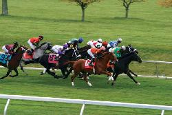Spring Race Meet at Keeneland (18037654)