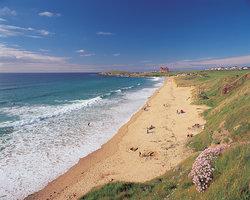 Playa Fistral