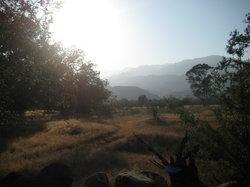 Western Trail Rides