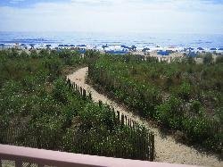 Beautiful beach just steps away