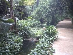 La Concepcion Jardin Botanico Historico de Malaga