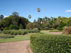 库萨山植物园