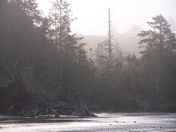 Moclips River