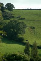 Chipley Farm B&B