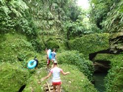 Millenium Cave Gorge with Moss (18564824)