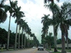 McGregor Boulevard