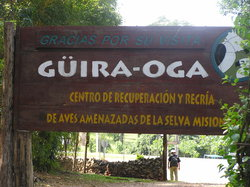 Guiraoga
