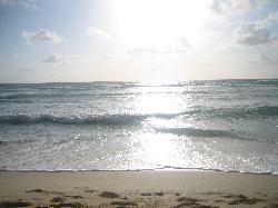 Quiet sunrise at the beach