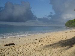 amazing beach nr 7