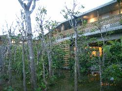 Jungle Hotel Painu Maya