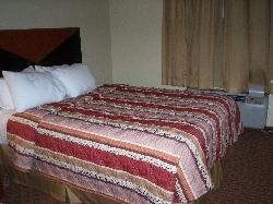 one of the queen size beds in suites