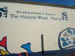 フーサヴィーク鯨博物館