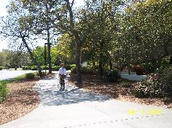 Wide paths for walking, bike riding or jogging...