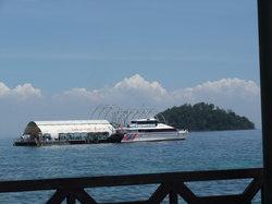 Langkawi Coral