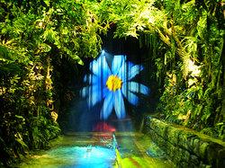 Parque Temático da Madeira
