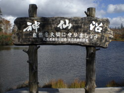 Shinsennuma