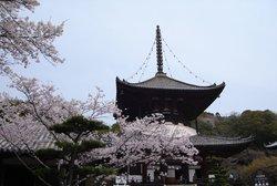 Negoro-ji Temple