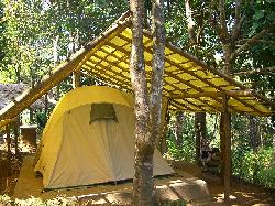 Our tent at Mojo Rainforest Retreat