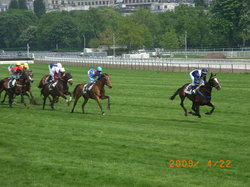 Hippodrome d'Auteuil