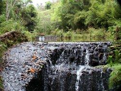 Το Πάρκο Mangabeiras