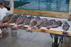 Martha Marie Fishing Charters