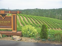 Discover Lake Tahoe Wine and Harvest Tour